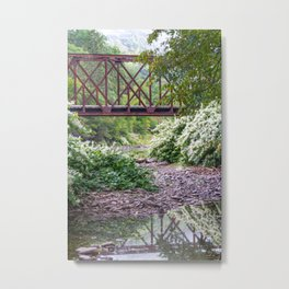 Train Bridge over The Beaverkill River Metal Print