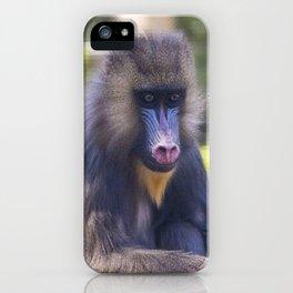 Mandrill iPhone Case