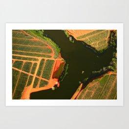 Fine art aerial photography by Okke Ornstein. Pineapple fields in Panama. Art Print