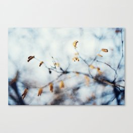 Winter Breaks 3 Canvas Print