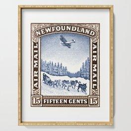 1931 NEWFOUNDLAND Dog Sled and Seaplane Stamp Serving Tray