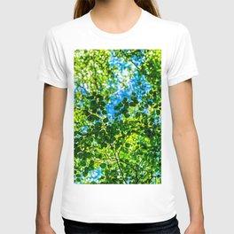 Linden Tree Leaves. Summer Shade T-shirt