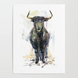 Black bull. Poster
