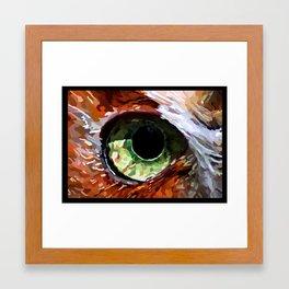 Eye of the Owl Framed Art Print