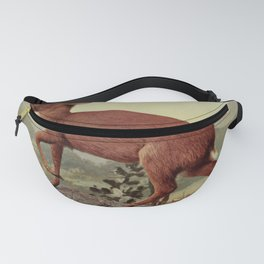 Vintage Print - Birds and Nature (1906) - Pigmy Antelope Fanny Pack