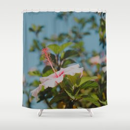 Soft Pink Hibiscus Shower Curtain