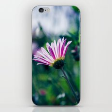 Flowers in Paris 1 iPhone & iPod Skin