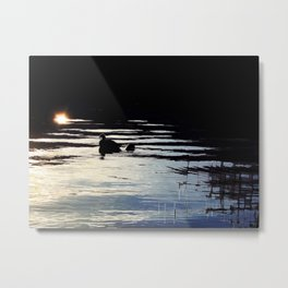 To the Light #nature #buyartprints #society6 Metal Print