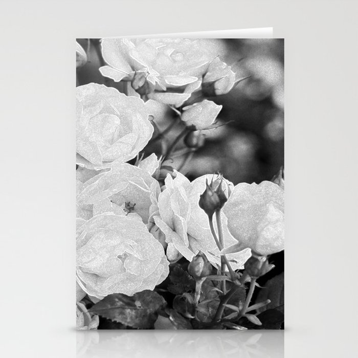 Roses For You Stationery Cards