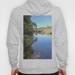 Where Canoes and Raccoons Go Series, No. 29 Hoody