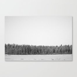 Tundra forest Canvas Print
