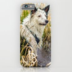 Welsh Boarder Collie iPhone 6s Slim Case