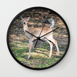 Fall Fawn Wall Clock