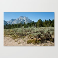 Tetons I Canvas Print