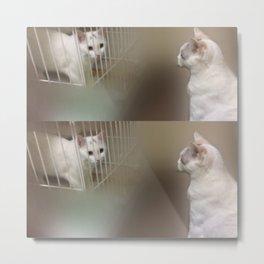 cats-406 Metal Print