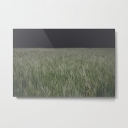 sweet field Metal Print