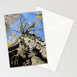 Cooper Smith Park Stationery Cards