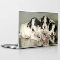 puppies Laptop & iPad Skins featuring Three Puppies by Premium