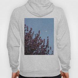 Cherry Blossoms Hoody