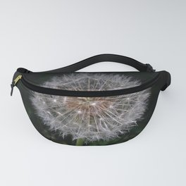 A Child's Flower Fanny Pack