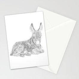 Baby Donkey Stationery Cards