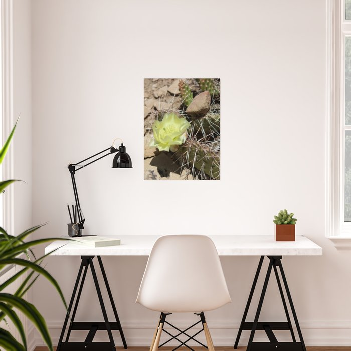 Cactus with Yellow Flower Poster