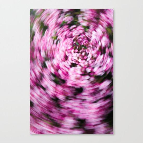 Hawthorn Daze Canvas Print