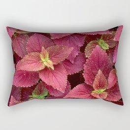 Nature Rocks Rectangular Pillow
