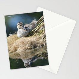 Juvenille Mallard Duck Relaxing Stationery Cards