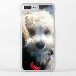 You Know I Don't Speak Spanish, Baxter Clear iPhone Case