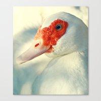 duck Canvas Prints featuring Duck by Falko Follert Art-FF77