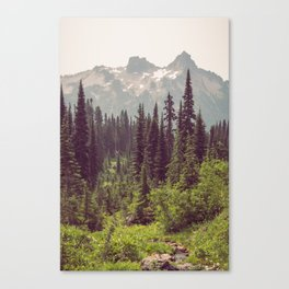 Faraway - Wilderness Nature Photography Canvas Print