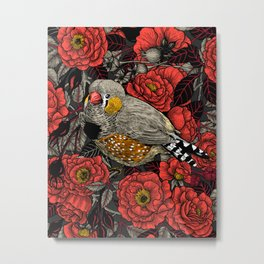 Zebra finch and red rose bush Metal Print