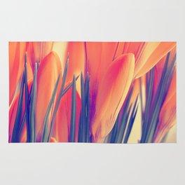 Spring 151 Rug