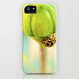 Lady Bug iPhone Case