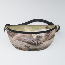 Big Beautiful Grizzly Bear Relaxing In Green Meadow Close Up Ultra HD Fanny Pack