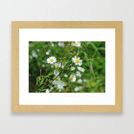 petits fleurs Framed Art Print