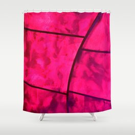 Junctions and Intersections Shower Curtain