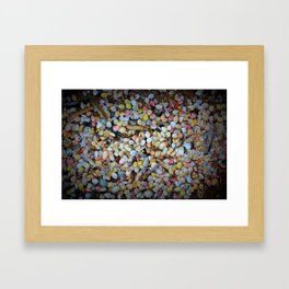 Colorful Shells Framed Art Print