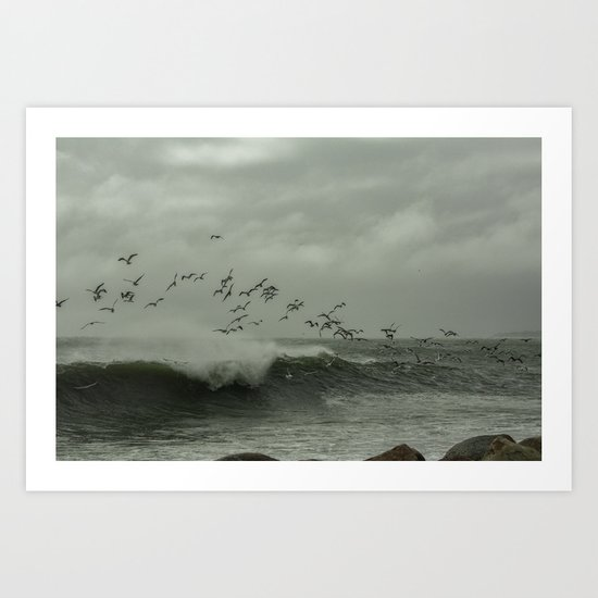 Birds dancing in the waves Art Print