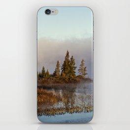 trees at south bay iPhone Skin