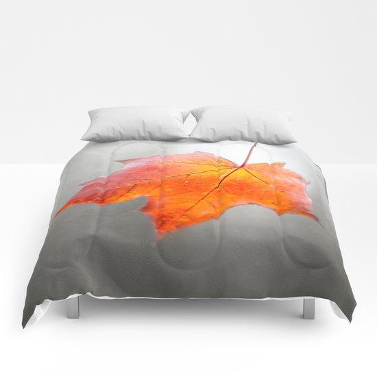 Velvet Autumn Comforters