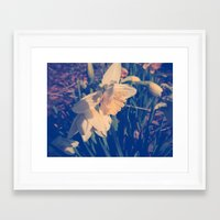 rileigh smirl Framed Art Prints featuring Daffodil by Rileigh Smirl