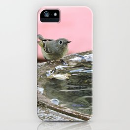 Kinglet at the Basin Rim iPhone Case