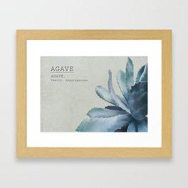 Agave, botanic print - green Framed Art Print