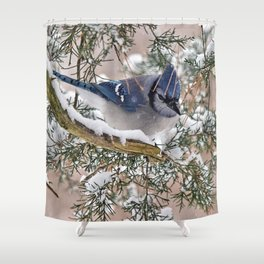 Snow Jay Shower Curtain