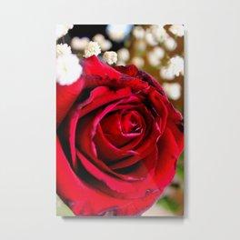 Zoomed in Rose Metal Print