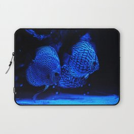 Aquarium fishes in blue light. Laptop Sleeve