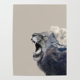 Mountain Lion Face Poster