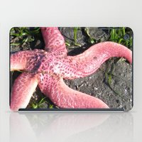 starfish iPad Cases featuring Starfish by Cindy Lysonski - Creative Daydreamzzzz